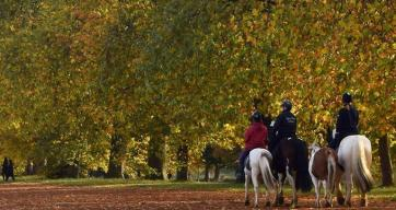 horse-riding-hyde-park-london-rotten-row